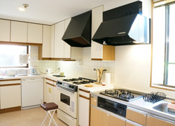 The main kitchen, fully-equipped with large size oven-microwave, dish washer, etc.