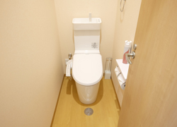 Toilet with bidet function.